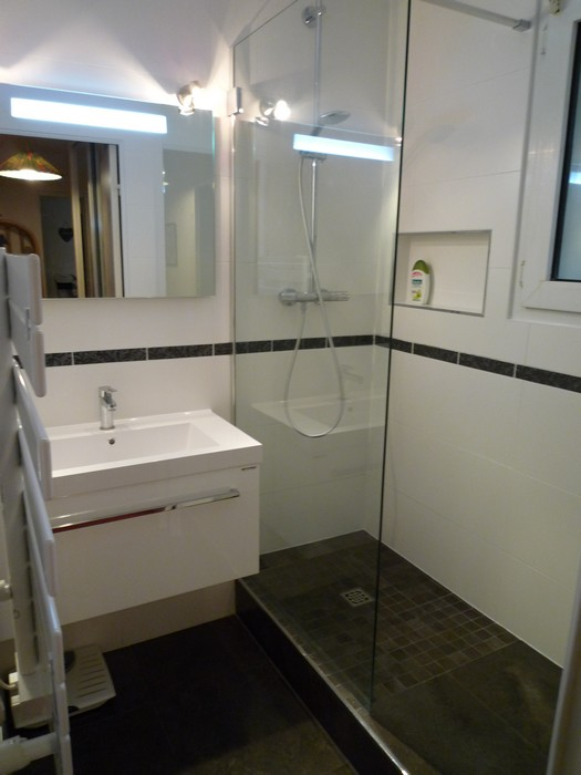 petite salle de bain avec douche in deco. Black Bedroom Furniture Sets. Home Design Ideas